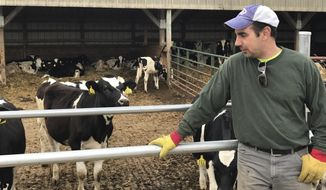 In this Wednesday, April 19, 2017 photo, Tim Prosser who owns a dairy farm, with his father John, tends to his cows in Columbus, Wis. After their sole milk buyer, Grassland Dairy, dropped them due to changes in Canadian policy that decreased the demand for U.S. milk, they face having to sell their 100 milking cows and shut down the business that's been in the family since 1973 if they can't find a new buyer by the end of the month. A handful of Wisconsin dairy farmers whose Canada market evaporated in a trade dispute were weighing offers from new buyers on Tuesday, April 25, but others were running out of time before an expiring contract risked putting them out of business.  (AP Photo/Cara Lombardo)