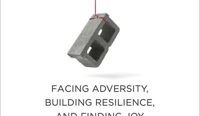"""This cover image released by Alfred A. Knopf shows """"Option B: Facing Adversity, Building Resilience, and Finding Joy,"""" by Sheryl Sandberg and Adam Grant. (Alfred A. Knopf via AP)"""