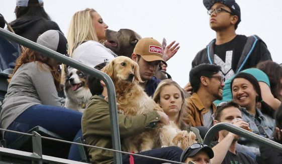 """Baseball fans sit in the stands with their dogs as part of a """"Bark at the Park"""" promotion during a baseball game between the Seattle Mariners and the Chicago White Sox, Thursday, May 18, 2017, in Seattle. (AP Photo/Ted S. Warren)"""