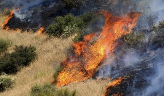A brushfire burns next to Otay Lakes Road near Highway 94 on Saturday, May 20, 2017 in Jamul, Calif.  Cal Fire says all evacuations have been lifted and the blaze near Jamul is 75 percent contained Monday after scorching more than 3 square miles (8.3 square kilometers) of dry brush.  (Hayne Palmour IV/The San Diego Union-Tribune via AP)