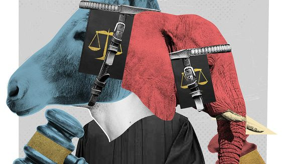 Illustration on the limited vision of politicized jurists on the question of nullification by Linas Garsys/The Washington Times