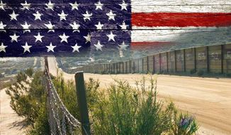 Winning Immigration at the Grassroots: Defeating amnesty and restoring common sense