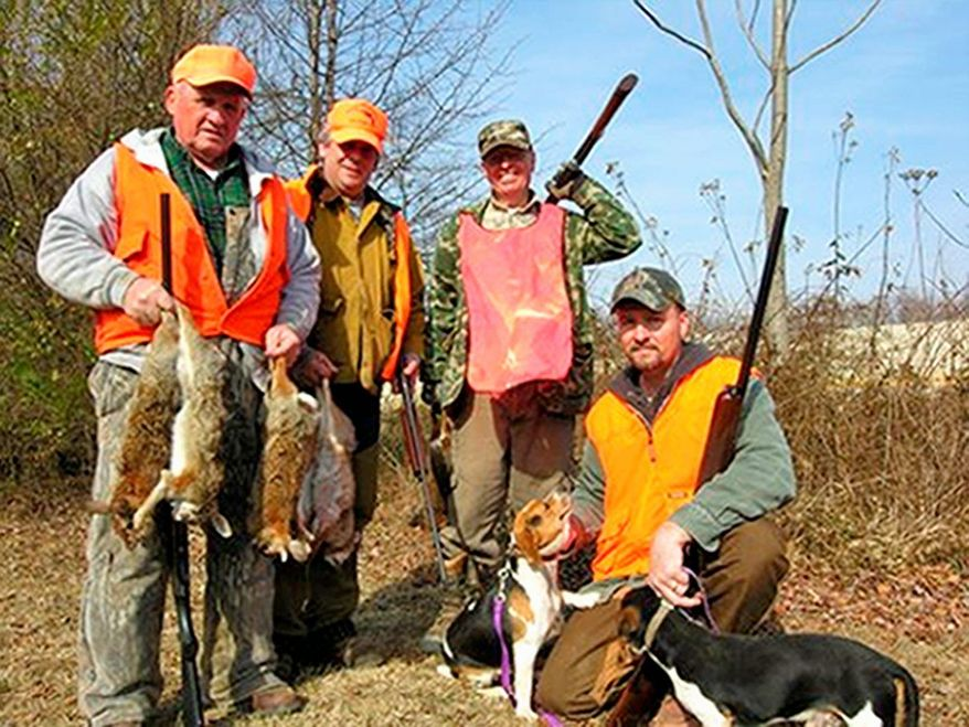 Gene Mueller / The Washington Times The hunting party included Tommy Nelson, Ronnie DePalma and Bob Greer with rabbits, and Bill Ayers with beagles Shorty and Amy.