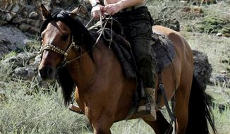 AGENCE FRANCE-PRESSE/GETTY IMAGES The London Times' Tony Halpin suspects Russian women will be swooning over photos of Prime Minister Vladimir Putin riding horseback bare-chested.