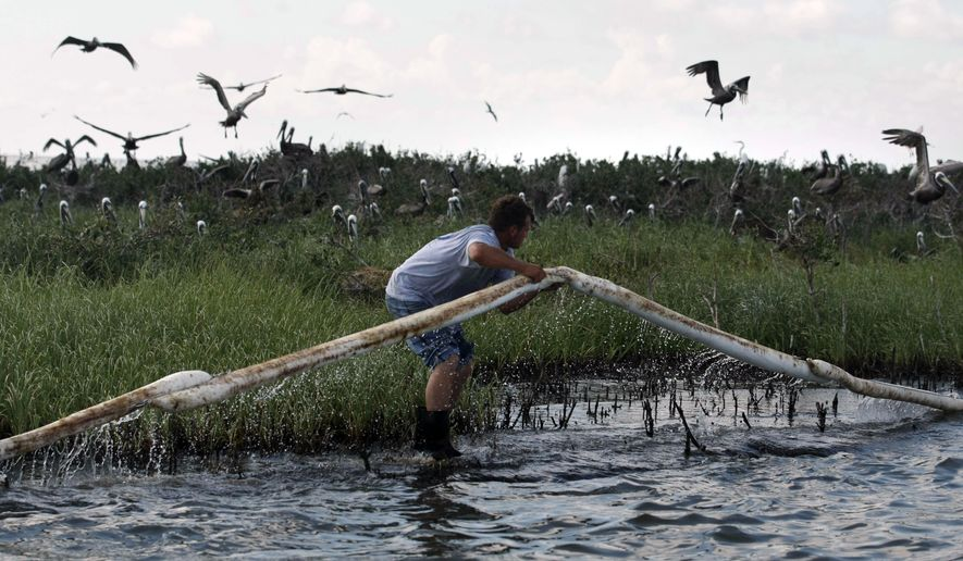 A Plaquemines Parish employee lays oil absorbent boom as pelicans leave their nests on an island in Barataria Bay, just inside the the coast of Louisiana, Saturday, May 22, 2010. The island is home to hundreds of brown pelican nests as well at terns, gulls and roseated spoonbills and is being impacted by oil from the Deepwater Horizon Oil Spill. (AP Photo/Gerald Herbert)