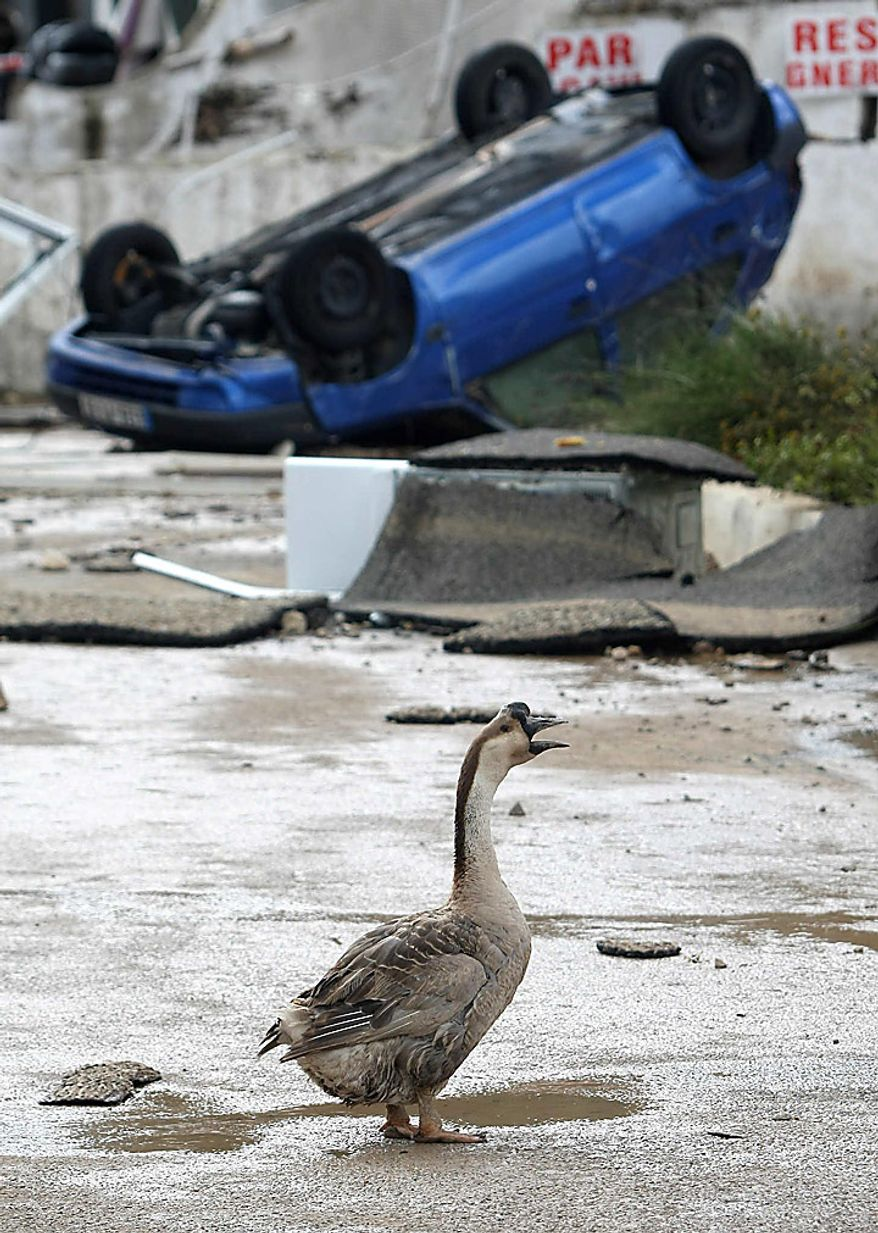 A goose walks through a street of Draguignan, France, on Wednesday, June 16, 2010. Regional authorities in southeastern France say more than a dozen people have been killed and many are missing in the aftermath of flash floods that followed powerful rainstorms. Unusually heavy rains recently in the Var region have transformed streets into muddy rivers that swept up trees, cars and other objects. (AP Photo/Lionel Cironneau)