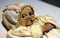 mummies_1741