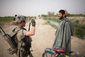 afghan_3531