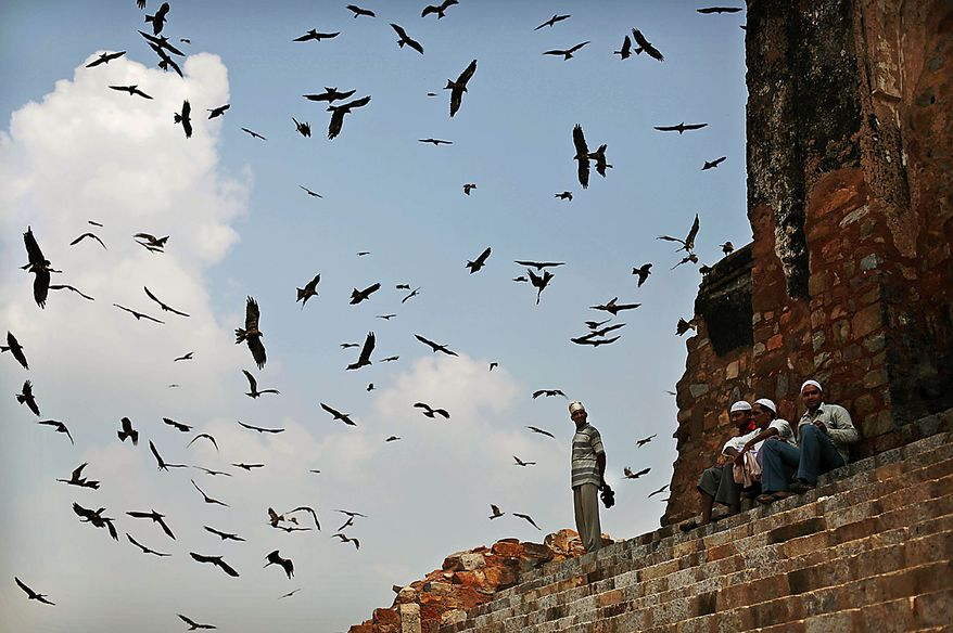 Black Kite birds fly around as Indian Muslims sit on the steps after offering Friday prayers at the Feroz Shah Kotla Mosque in New Delhi, India, Friday, Aug. 13, 2010. Muslims throughout the world are marking the month of Ramadan, the holiest month in the Islamic calendar where the observant fast from dawn till dusk. (AP Photo/Kevin Frayer)