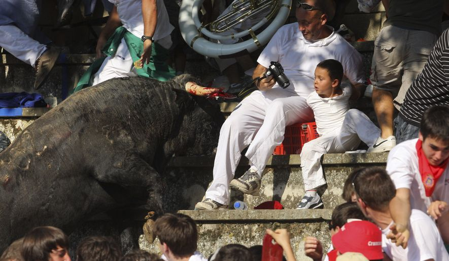 In this Wednesday, Aug. 18, 2010, picture made available Thursday, Aug 19. 2010, a bull charges against spectators after leaping into the stands during a bullfight in Tafalla, northern Spain.Up to forty people were injured when a bull leapt into the packed grandstands of a Spanish bullring and ran amok, charging and trampling on spectators. (AP Photo/Manuel Sagues)