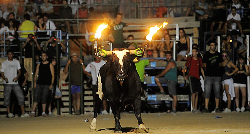 Spectators look at a bull with flaming horns during Toro Embolao in Amposta, Spain, early Thursday, Aug. 19, 2010. (AP Photo/Manu Fernandez)