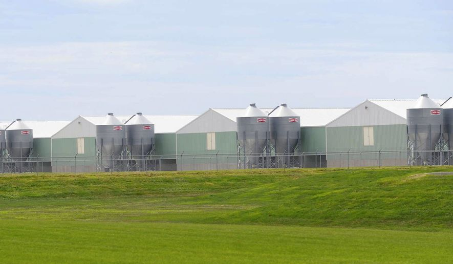 Wright County Egg operates this facility on Highway 69 near Galt, Iowa. After an outbreak of salmonella in several states, investigators traced the problem to Wright County Egg, leading to a recall of 380 million eggs. (AP Photo/Nirmalnedu Majumdar)
