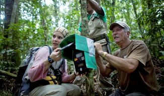 Biologist Emiliana Isasi-Catala and Guatopo National Park ranger Arturo Gonzalez check a camera trap. Ms. Isasi-Catala has captured videos and photographs of jaguars by using a collection of cameras with motion sensors set up in the Guatopo National Park forest. (Associated Press)