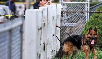A police officer and dog search for evidence near the scene of a shooting in Boston, Tuesday, Sept. 28, 2010, following an early morning shooting in which five people including a toddler were shot in the Mattapan neighborhood of Boston. (AP Photo/Josh Reynolds)