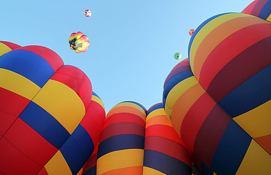 Hot air balloons ascend during the annual  Albuquerque International Balloon Fiesta in Albuquerque, N.M., on Saturday, Oct. 2, 2010. About 500 balloons were registered for the annual event. (AP Photo/Susan Montoya Bryan)