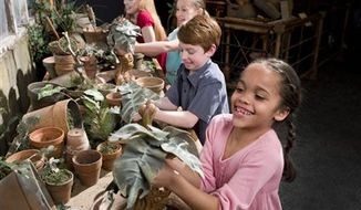"""This undated image provided by Warner Bros. Entertainment via the Pacific Science Center shows Kreacher, the Black family house-elf, as seen in Grimmauld Place in """"Harry Potter and the in the Order of the Phoenix,"""" part of """"Harry Potter: The Exhibition."""" The exhibition is a showcase filled with the imagery evoked in J.K. Rowling's seven-part series about an orphan named Harry who discovers he is part of a mostly hidden magical world. (AP Photo/Warner Bros. Entertainment via the Pacific Science Center)"""