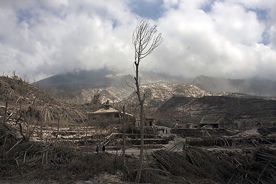 A withered tree stands in a village badly hit by pyroclastic flows from Mount Merapi eruption in Kinahrejo, Yogyakarta, Indonesia, Wednesday, Oct. 27, 2010. Rescuers scoured the slopes of Indonesia's most volatile volcano Wednesday after it was rocked by an eruption that spewed clouds of searing ash, killing at least 25 villagers including an old man known as the mountain's spiritual gatekeeper. (AP Photo/Gembong Nusantara)