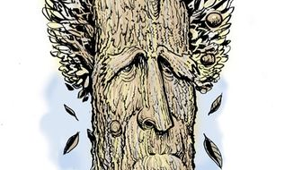 Illustration: Old Hickory by Alexander Hunter for The Washington Times