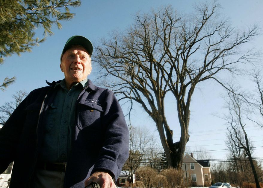Frank Knight, 102, of Yarmouth, Maine, took care of a 217-year-old elm tree, called Herbie (background), for about 50 years. The diseased tree, cut down in January, has been made into works of art including a guitar. (Associated Press)