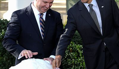 "President Barack Obama stands with National Turkey Federation Chairman Yubert Envia as he pets ""Apple,"" the National Thanksgiving turkey during a ceremony to pardon the turkey in the Rose Garden of the White House in Washington, Wednesday, Nov. 24, 2010. (AP Photo/Susan Walsh)"