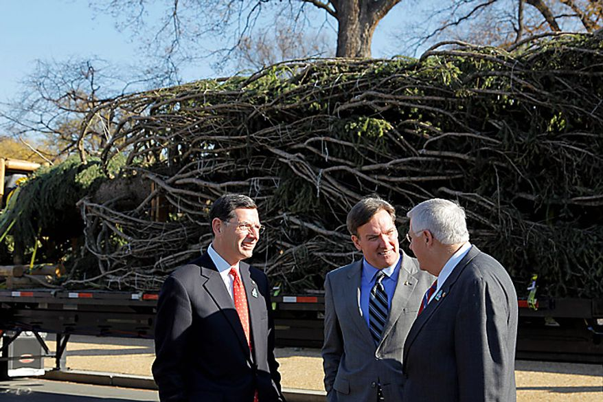 From left, Sen. John Barrasso, R-Wyo., Architect of the Capitol Stephen T. Ayers, and Sen. Michael Enzi, R-Wyo., talk on Capitol Hill in Washington, Monday, Nov. 29, 2010, as the Capitol Christmas tree arrives to be placed on the West Front of the Capitol. The tree was cut down earlier this month in the Bridger-Teton National Forest in northwest Wyoming. (AP Photo/Alex Brandon)