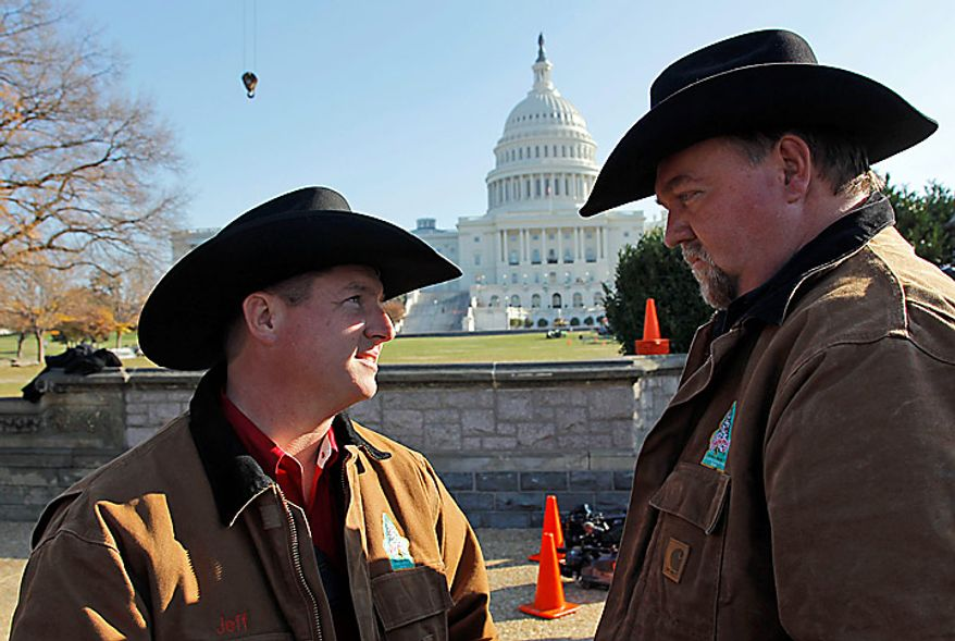 Jeff Underwood, left, and Mark Fortner, both from Dahloneg, Ga., talk before the Capitol Christmas tree is placed on the West Front of the Capitol in Washington, Monday, Nov. 29, 2010. The tree is from the Bridger-Teton National Forest in northwest Wyoming. (AP Photo/Alex Brandon)