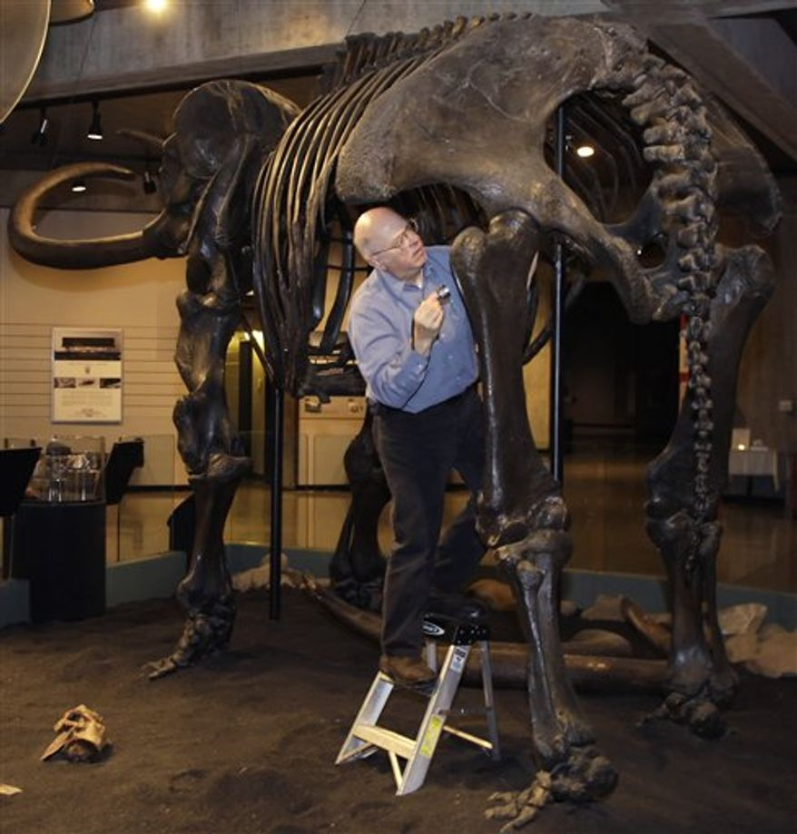 ** FILE ** Mark Brown, left, and senior curator Bob Glotzhober removes the tail from the Conway Mastodon at the Ohio Historical Society in Columbus, Ohio Thursday, Jan. 6, 2011. (AP Photo/Mark Duncan)