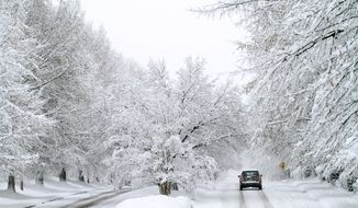 A rare Christmas Day snowfall creates a veritable winter wonderland along a roadway in Raleigh, N.C., on Sunday morning, Dec. 26, 2010. (AP Photo/Jim R. Bounds)