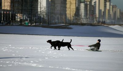 The day after a major snowstorm moved through the region, Hunter Duncan, age 12, gets a pull from his father's dogs, Salvo and Avon. Hunter used a boogie board to sled on the beach at 2nd Street on the Virginia Beach oceanfront.  (AP Photo/The Virginian-Pilot, L. Todd Spencer)