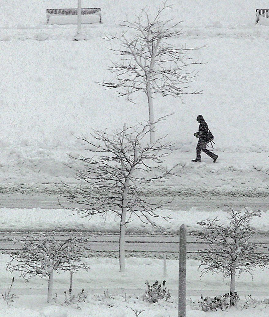 A morning commuter passes snow covered trees along the Rose Kennedy Greenway in Boston, Wednesday, Jan. 12, 2011.  The Boston area is expected to receive well over a foot of snow during a day long winter storm.(AP Photo/Charles Krupa)