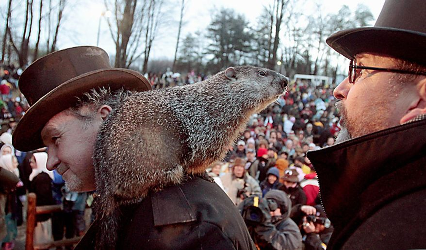 Punxsutawney Phil, the weather-predicting groundhog, stands on the shoulder of one of his handlers, John Griffiths, while looking at another handler, Ben Hughes, after the Groundhog Club claimed that Phil did not see his shadow and winter will end soon after Groundhog Day on Wednesday, Feb. 2, 2011, in Punxsutawney, Pa. (AP Photo/Keith Srakocic)