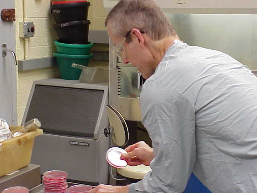 "**FILE** This undated image attached to an e-mail sent Nov. 14, 2001 by Bruce Ivins shows him handling ""cultures of the now infamous 'Ames' strain of Bacillus anthracis"" at his lab, according to the text of the message. Federal investigators overstated the strength of the scientific evidence against a late Army researcher blamed for the anthrax mailings that killed five people in 2001, a panel of scientists said Tuesday after an 18-month review. (Associated Press)"
