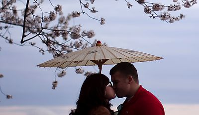 Kim Trang, left, and Kolin Fischer share a kiss under the cherry blossoms along the Tidal Basin, in Washington, D.C., Saturday, March 26, 2011. The couple are both from Arlington, Va. (Drew Angerer/The Washington Times)