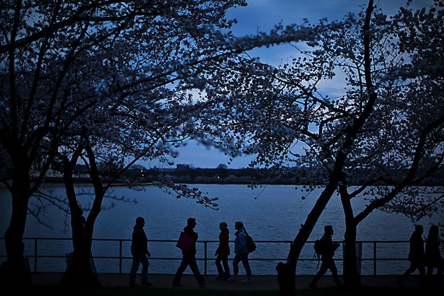 At dusk, people walk under the cherry blossoms along the Tidal Basin, in Washington, D.C., Saturday, March 26, 2011. (Drew Angerer/The Washington Times)