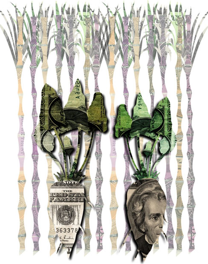 Illustration: Big Sugar by Linas Garsys for The Washington Times