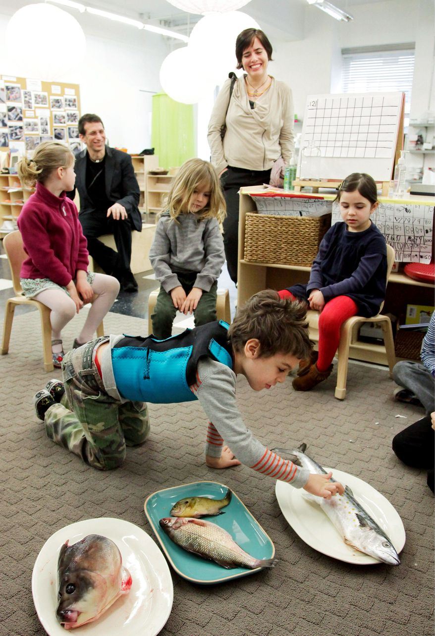 Kindergarten students learn about the life and death of fish at the Blue School in New York. The children developed a curiosity toward the subject after fish in a classroom aquarium died during winter vacation. (Associated Press)