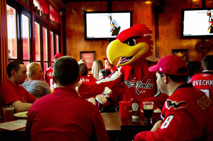 The Capitals' mascot, Slapshot, greets fans watching Game 4 of the first-round series between the Caps and New York Rangers at Union Jack's in Arlington. (Drew Angerer/The Washington Times)