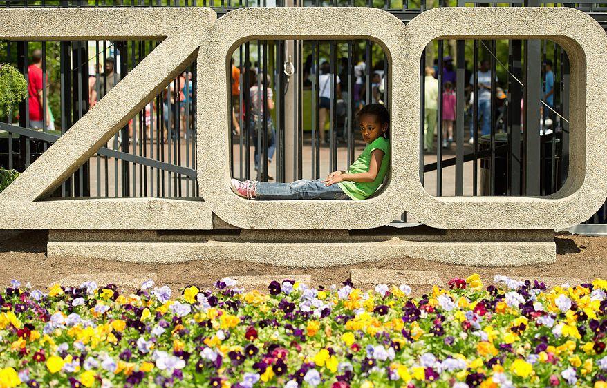 """BARBARA SALISBURY/THE WASHINGTON TIMES Camryn Swain, 5, of the District, relaxes in the """"ZOO"""" sign at the National Zoo on Monday. Hundreds of people came out to the zoo on Easter Monday in celebration of African-American Family Day. An altercation led to a stabbing during the event and zoo officials say security will be reviewed."""