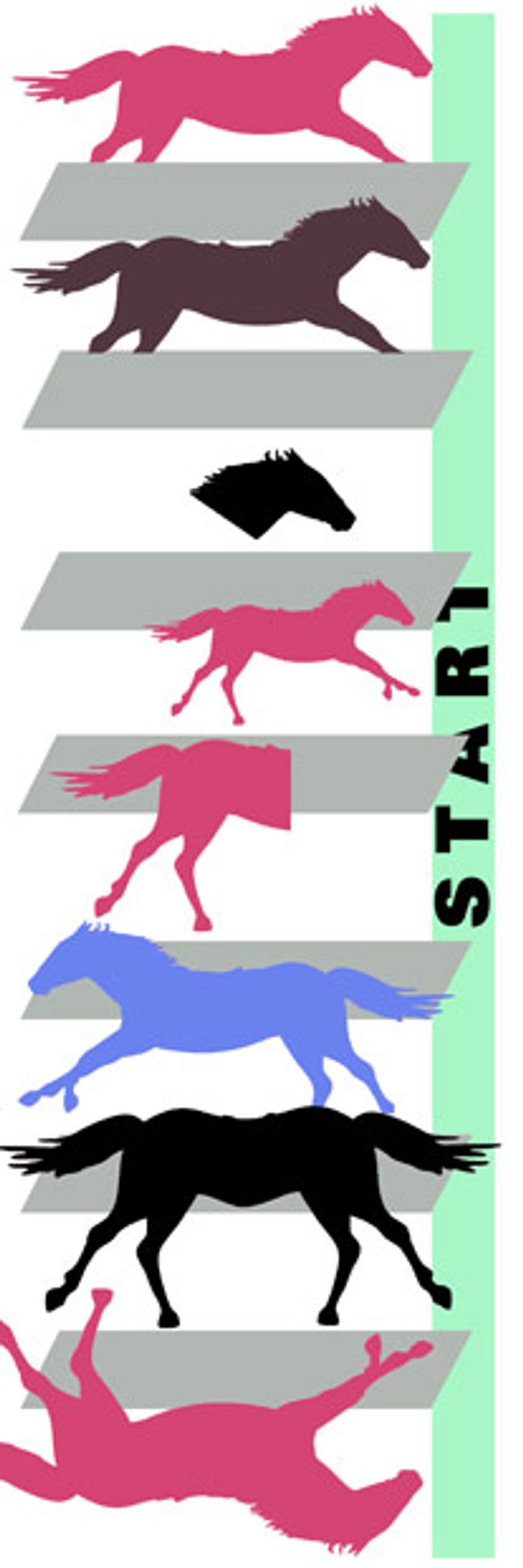 Illustration: Horse race