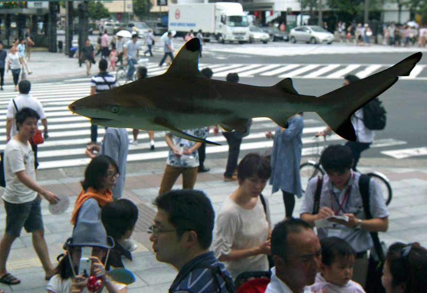 ** FILE ** Visitors view two Blacktip Reef Sharks and other tropical fish from the Okinawan sea on display in a glass tank placed outside the Sony Building in Tokyo's Ginza shopping district Monday, July 18, 2011. The display was part of a summer attraction in the landmark building. (AP Photo/Shuji Kajiyama)