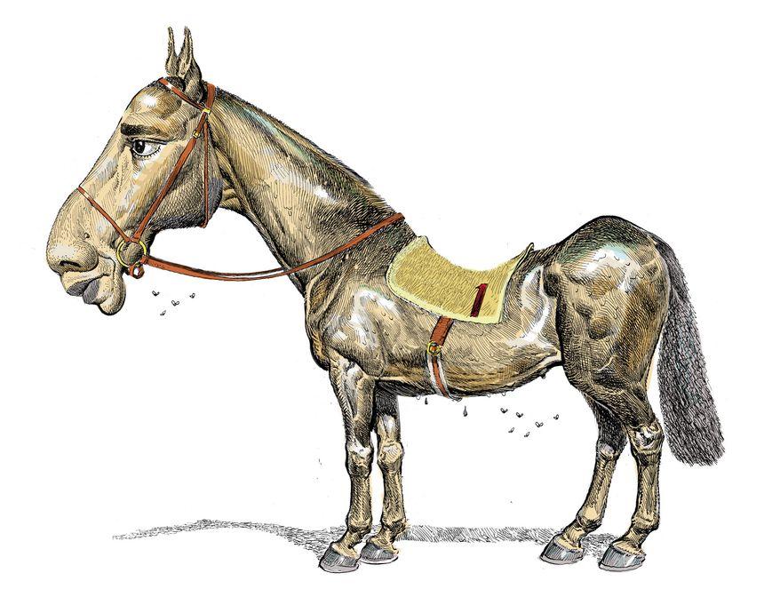 Illustration: Weak horse by Alexander Hunter for The Washington Times