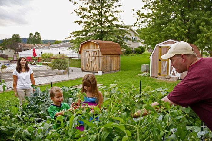 """Jessica and Daniel C. Pfielstucker Jr. tend to their garden with their children, Haley and Ben, in Duncansville, Pa. Mr. Pfielstucker was a contractor working inside the Pentagon and managed to free himself from the rubble. """"It got scary quiet,"""" he recalled. """"Then people started screaming for help."""" (Andrew Harnik/The Washington Times)"""