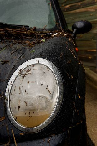 Muddy water sits inside the headlight of a Mini Cooper in the parking lot of a Courtyard Marriott hotel on Eisenhower Avenue in Alexandria, Va., on Sept. 9, 2011. The lot was flooded after heavy rains pounded the region the previous night. (Andrew Harnik/The Washington Times)