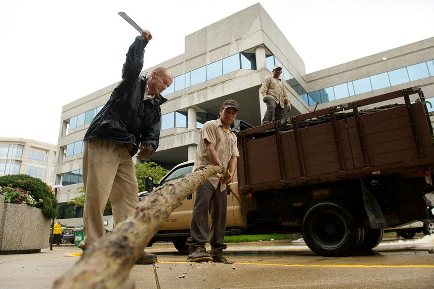 Nick Pyteo (left), a supervisor for a clean-up and landscaping company, chops up a large tree limb before hauling away a truckload of debris from a parking lot on Eisenhower Avenue in Alexandria, Va., on Sept. 9, 2011. The lot was flooded after heavy rains pounded the region the previous night. (Andrew Harnik/The Washington Times)