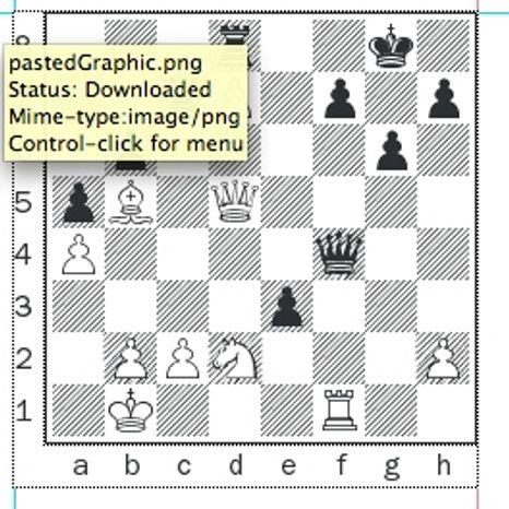 Efimenko-Forster after 27. Rf1.