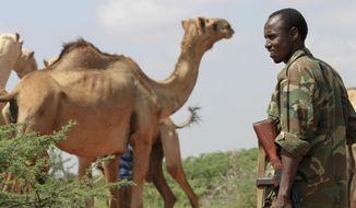 In this photo taken Monday, Nov. 21, 2011, a Somali government soldier provides security for visiting media near Dolo in Somalia. (AP Photo/Jason Straziuso)