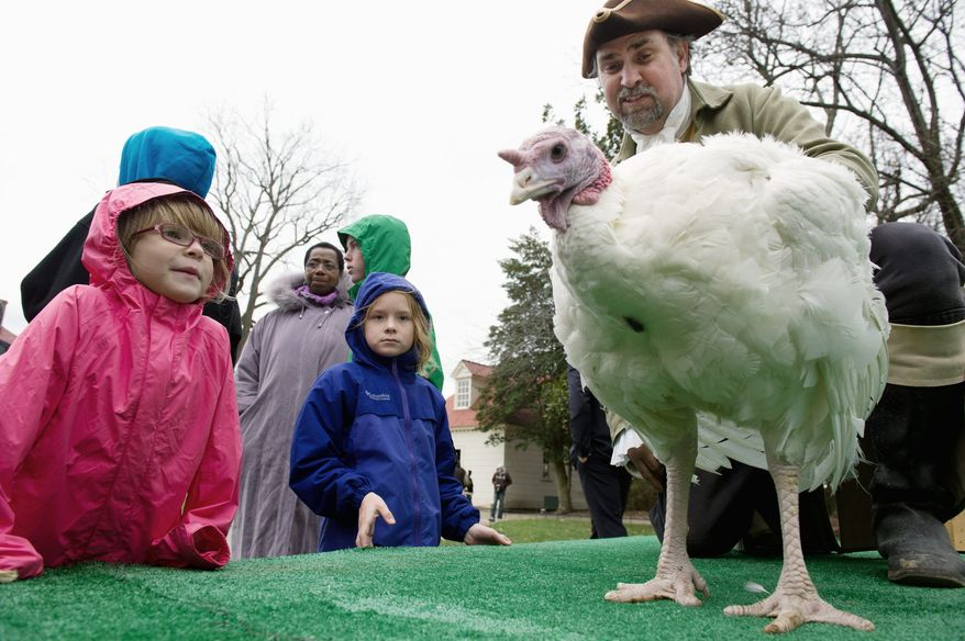 Leta Cannon, 5, of Chicago (left), and Sarah Frances Gilroy, 7, of Birmingham, Ala., take a close look at Liberty, Tom Plott (right) was on hand to make sure Liberty and Peace, the two pardoned turkeys, got settled in alright at Mount Vernon. (Andrew Harnik/The Washington Times)