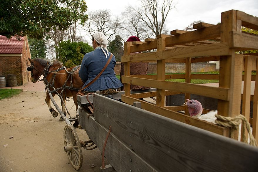 Liberty, the turkey pardoned by President Obama, is taken to Mount Vernon in Virginia by horse and wagon by livestock supervisor Lisa Pregent on Nov. 23, 2011. (Andrew Harnik/The Washington Times)