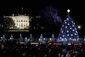 Obama_National_Christmas_#4.jpg