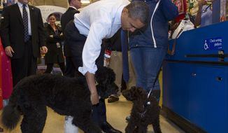 President Obama and his dog, Bo, visit with a poodle named Cinnamon as they check out at a PetSmart store in Alexandria on Wednesday, Dec. 21, 2011. (AP Photo/Carolyn Kaster)